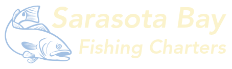 Sarasota Bay Fishing Charters